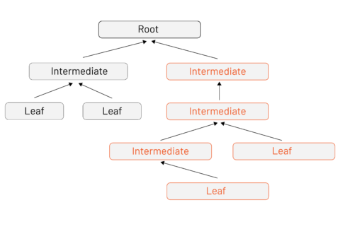 Alt: PKI certificate tree with a root, three intermediate signing CAs, and four leaf certificates (issued by various intermediates across the tree).